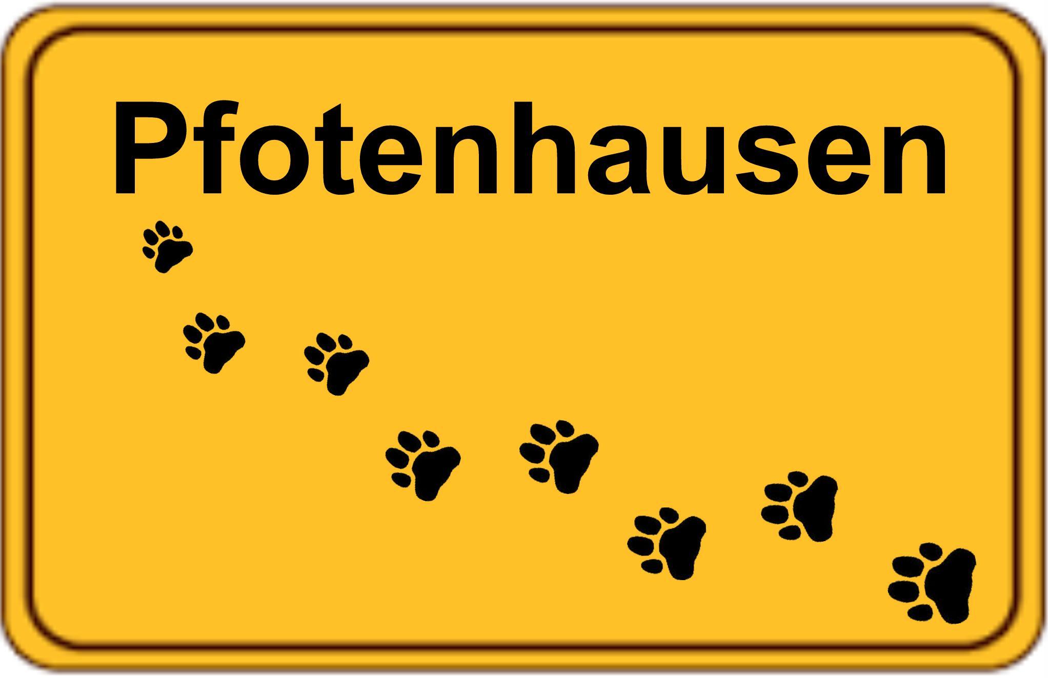 Hundeschule Pfotenhausen Neumünster Arpsdorf
